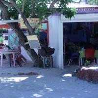 Sans paroles/Wordless : Guadeloupe