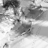 sans parole/wordless : geographie de l'hiver/winter geography